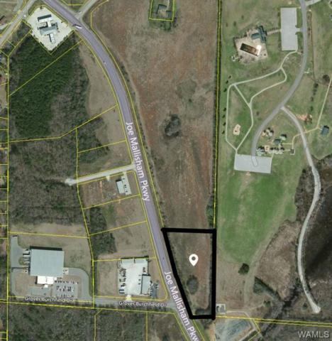 0 Mallisham Parkway N, TUSCALOOSA, AL 35404 (MLS #125903) :: Global Homes Group