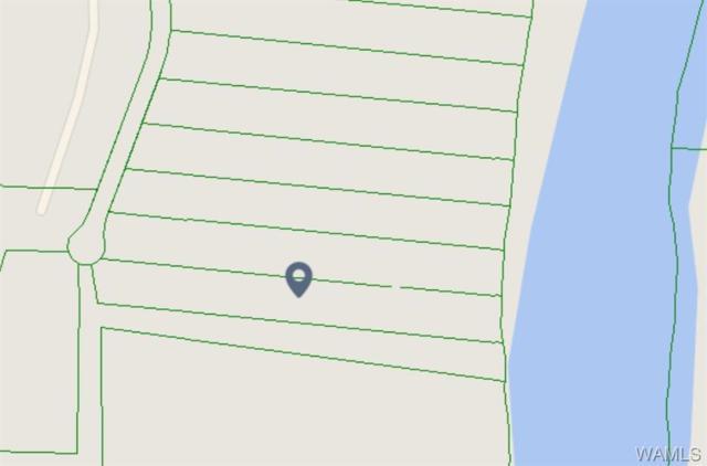0 Riverbend Road, MOUNDVILLE, AL 35474 (MLS #126067) :: The Gray Group at Keller Williams Realty Tuscaloosa