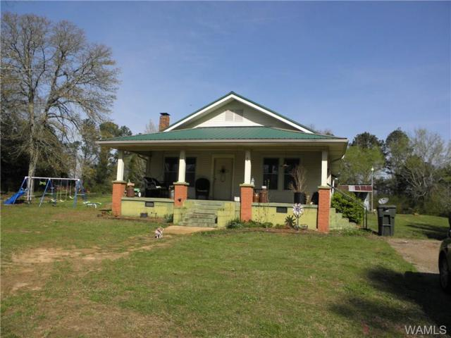 850 County Road 37 Road, MOUNDVILLE, AL 35474 (MLS #126086) :: The Advantage Realty Group