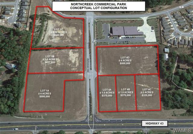 1B North Creek Boulevard, NORTHPORT, AL 35473 (MLS #126105) :: Global Homes Group