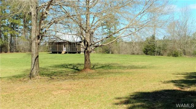 0 County Road 181, EUTAW, AL 35462 (MLS #126106) :: The Advantage Realty Group
