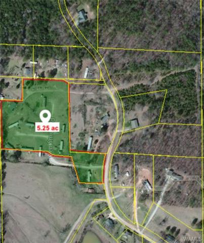 0 Hen Smith Road #11, VANCE, AL 35490 (MLS #126180) :: Williamson Realty Group