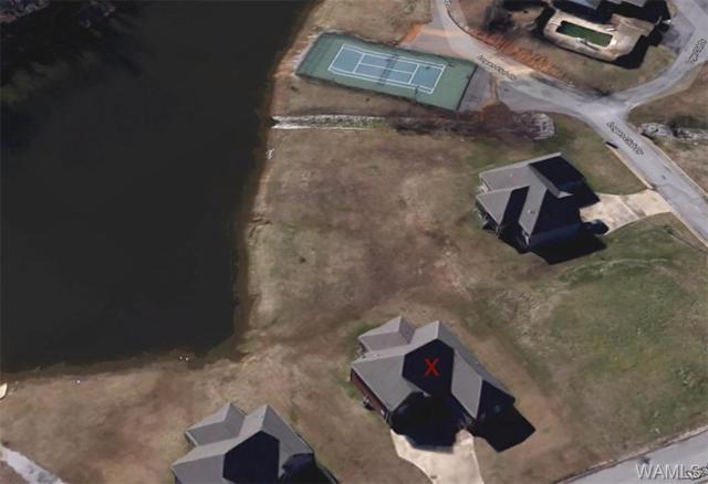 18571 Meadow Run Drive, VANCE, AL 35490 (MLS #126187) :: The Advantage Realty Group