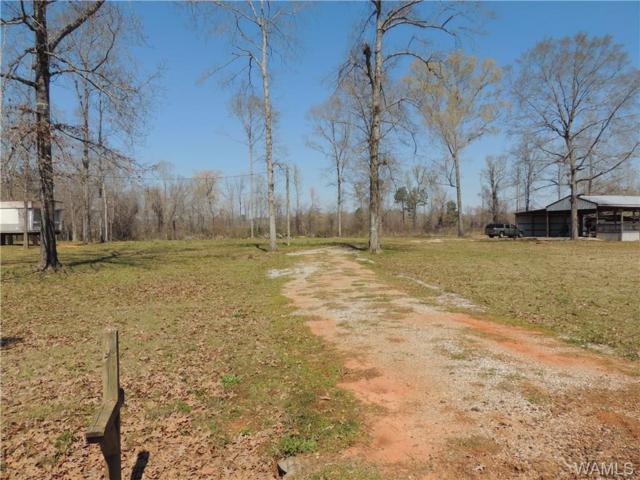 6059 Clear Creek Road, AKRON, AL 35441 (MLS #126253) :: The Advantage Realty Group