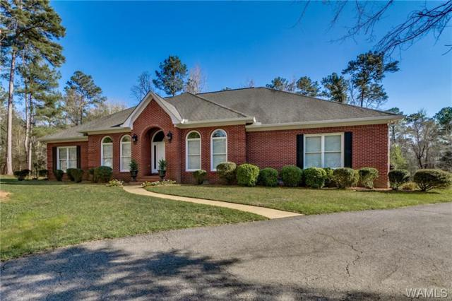 11172 Patton Road, NORTHPORT, AL 35475 (MLS #126313) :: The Advantage Realty Group