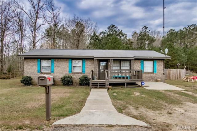 18480 Highway 43 N, NORTHPORT, AL 35475 (MLS #126314) :: The Advantage Realty Group