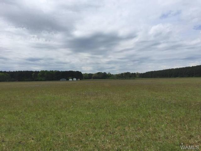 0 Deerlick Rd, TUSCALOOSA, AL 35406 (MLS #126592) :: The Advantage Realty Group