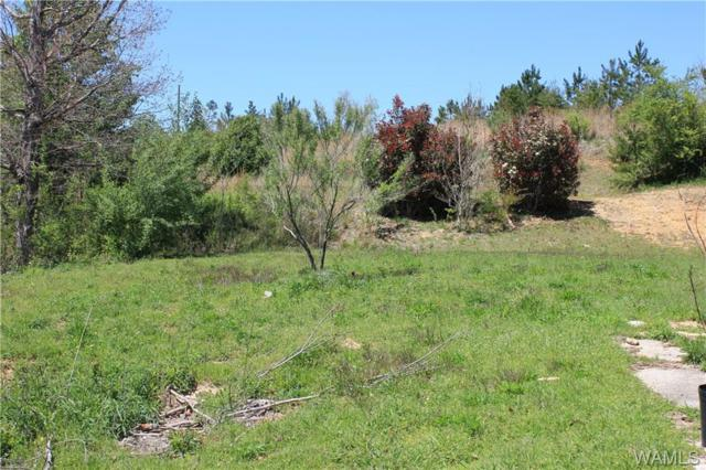 14450 Dixie Land Road, BROOKWOOD, AL 35444 (MLS #126630) :: Williamson Realty Group