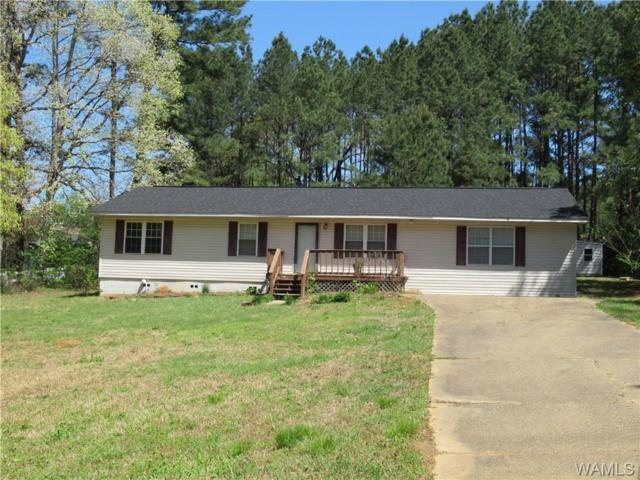 1408 Leland Drive, NORTHPORT, AL 35473 (MLS #126635) :: Alabama Realty Experts