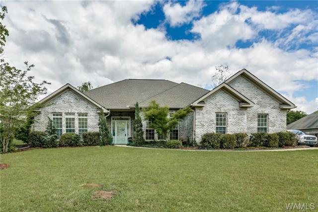 13647 Randa Parkway, NORTHPORT, AL 35475 (MLS #126683) :: The Gray Group at Keller Williams Realty Tuscaloosa