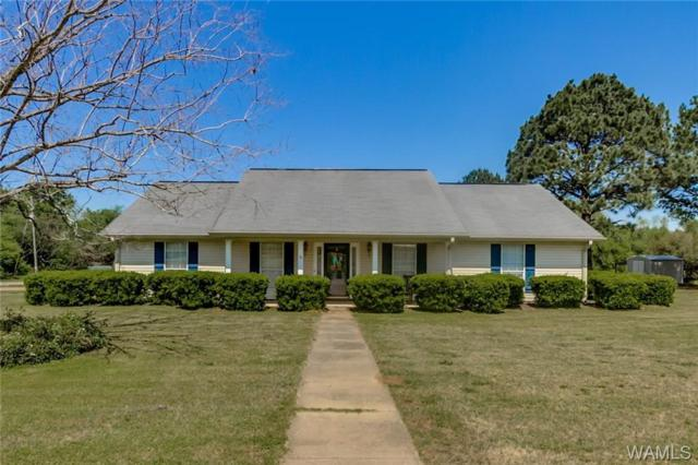 983 Valley View Gardens Circle, MOUNDVILLE, AL 35474 (MLS #126728) :: The Advantage Realty Group
