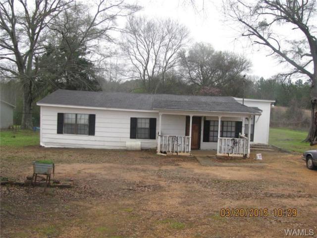 191 Gabriel Creek Road, MOUNDVILLE, AL 35474 (MLS #126737) :: Williamson Realty Group