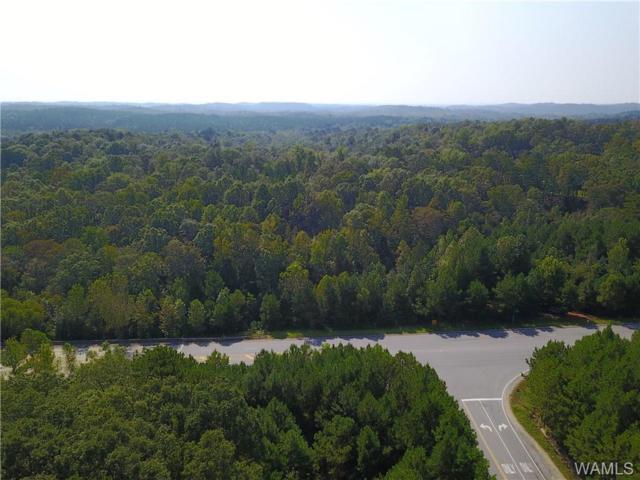 00 Rose Boulevard, NORTHPORT, AL 35473 (MLS #126814) :: The Gray Group at Keller Williams Realty Tuscaloosa