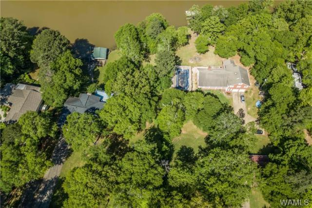 42 Choctaw Trail, NORTHPORT, AL 35475 (MLS #126917) :: Alabama Realty Experts