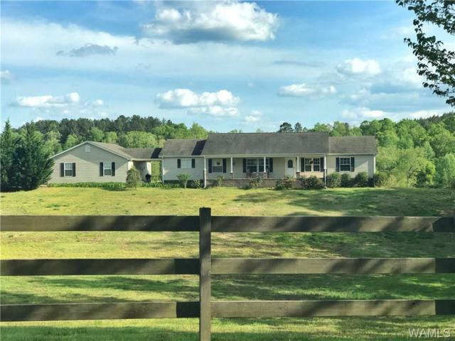 1614 Camp Branch Road, WEST BLOCTON, AL 35184 (MLS #126929) :: The Advantage Realty Group