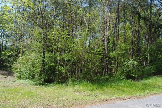 000 7th Ave Sw, REFORM, AL 35481 (MLS #126972) :: The Advantage Realty Group