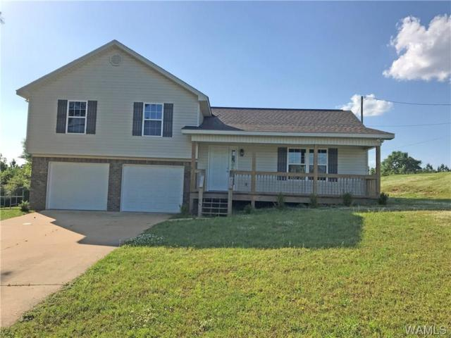 10635 Hi Road, VANCE, AL 35490 (MLS #127056) :: Alabama Realty Experts