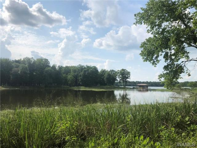 81 Black Warrior Bay, SAWYERVILLE, AL 36776 (MLS #127186) :: The Advantage Realty Group