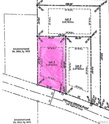 00 Gilmore Mine Road, COTTONDALE, AL 35453 (MLS #127248) :: The Advantage Realty Group