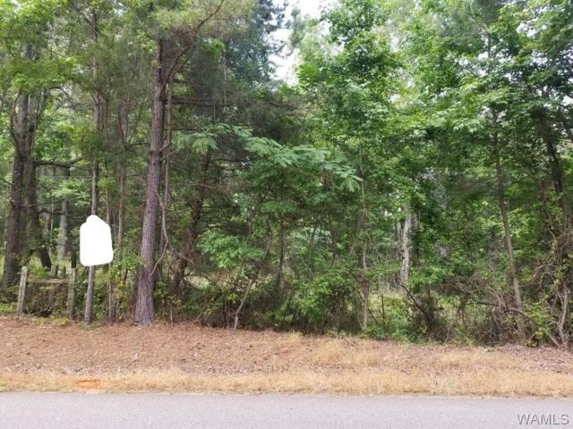 0 George Newell Road, VANCE, AL 35490 (MLS #127258) :: The Gray Group at Keller Williams Realty Tuscaloosa