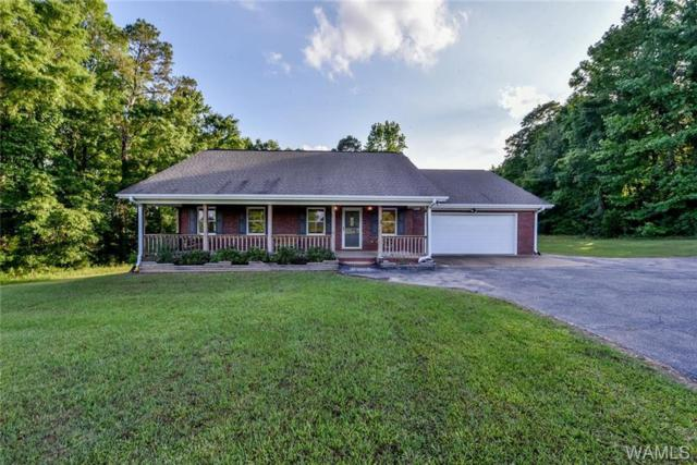 17538 Highway 171, NORTHPORT, AL 35475 (MLS #127266) :: The Advantage Realty Group
