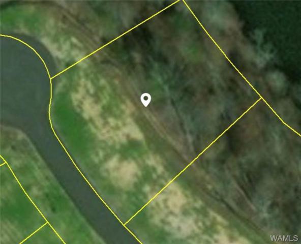 2330 Maison Du Lac Drive, TUSCALOOSA, AL 35406 (MLS #127275) :: The Advantage Realty Group