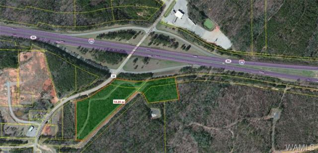 0 Covered Bridge Road, COTTONDALE, AL 35453 (MLS #127282) :: Wes York Team