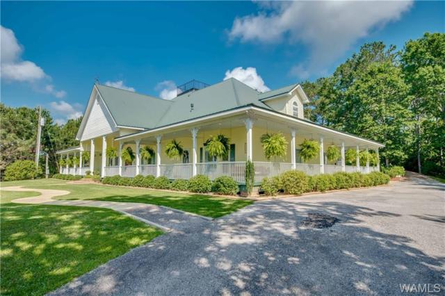 13447 Rocky Ridge Drive, NORTHPORT, AL 35475 (MLS #127305) :: The Advantage Realty Group