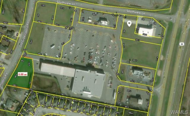 1 Old Greensboro, TUSCALOOSA, AL 35405 (MLS #127330) :: The Advantage Realty Group