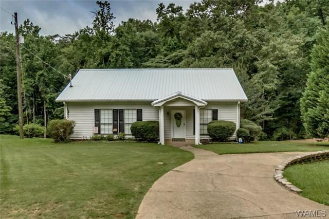 15448 Beacon Point Drive, NORTHPORT, AL 35475 (MLS #127441) :: The Advantage Realty Group