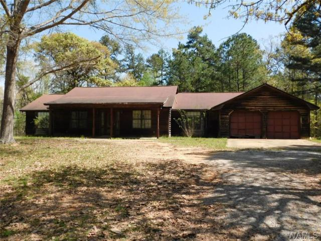 9222 Wire Road, COTTONDALE, AL 35453 (MLS #127445) :: The Advantage Realty Group