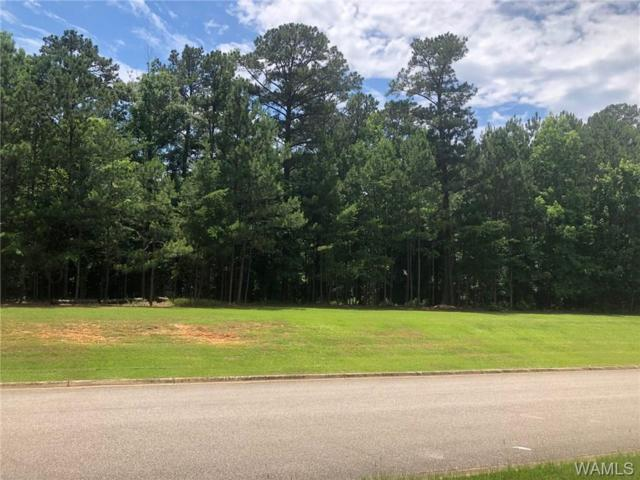 0 Waterford Drive, NORTHPORT, AL 35475 (MLS #127463) :: The Gray Group at Keller Williams Realty Tuscaloosa