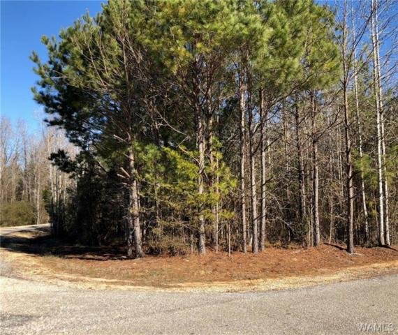 Lot 27 Clear Lake Drive, NORTHPORT, AL 35475 (MLS #127474) :: The Gray Group at Keller Williams Realty Tuscaloosa
