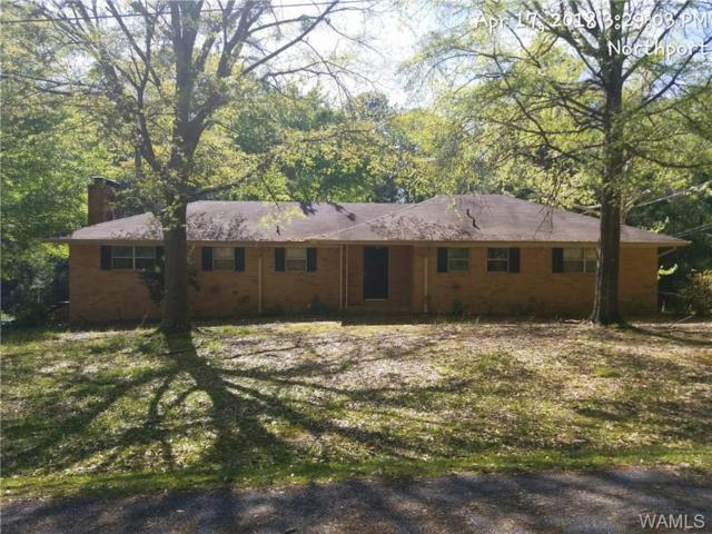 4200 67TH Avenue, NORTHPORT, AL 35473 (MLS #127493) :: The Advantage Realty Group