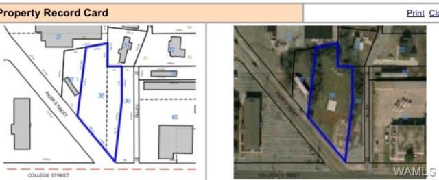 323 Park Street, DEMOPOLIS, AL 36732 (MLS #127494) :: The Advantage Realty Group