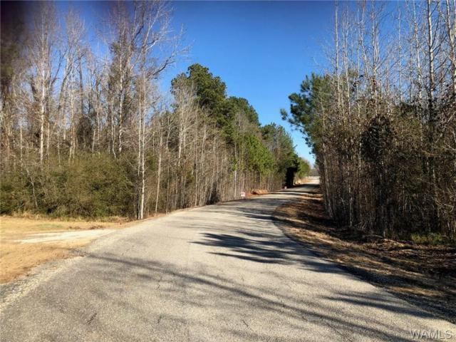 Lot 34 Lake Hills Lane, NORTHPORT, AL 35475 (MLS #127503) :: The Advantage Realty Group