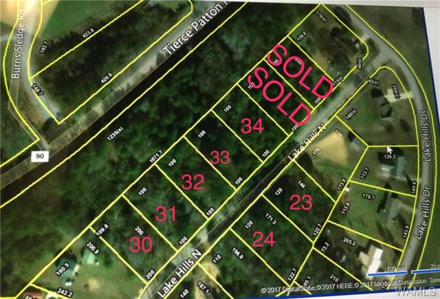 Lot 24 Lake Hills Lane, NORTHPORT, AL 35475 (MLS #127509) :: The Gray Group at Keller Williams Realty Tuscaloosa