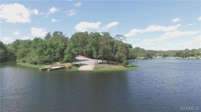 Lot 17 Lake Hills Drive, NORTHPORT, AL 35475 (MLS #127514) :: The Gray Group at Keller Williams Realty Tuscaloosa