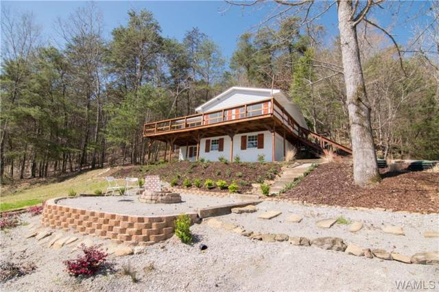11182 Treasure Island Drive, NORTHPORT, AL 35475 (MLS #127531) :: The Advantage Realty Group