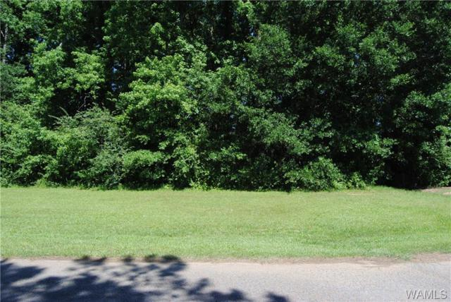 00 6th Avenue NW, FAYETTE, AL 35555 (MLS #127533) :: Wes York Team