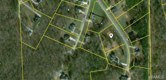 15552 Cedar Ridge Drive, NORTHPORT, AL 35475 (MLS #127594) :: The Gray Group at Keller Williams Realty Tuscaloosa