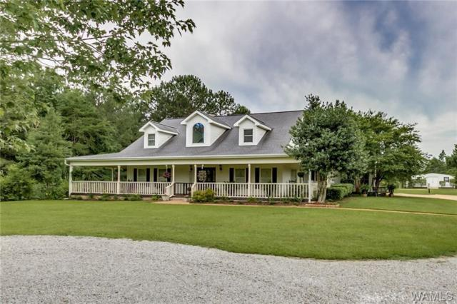 11125 Big Hurricane Spur Road, BROOKWOOD, AL 35444 (MLS #127603) :: The Advantage Realty Group