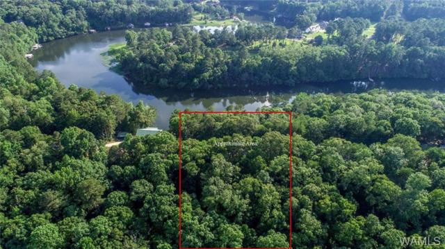 0 Charlottesville Circle, NORTHPORT, AL 35473 (MLS #127627) :: The Advantage Realty Group