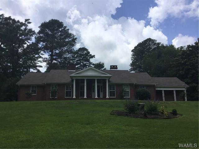 531 Pine Hill Drive, ALICEVILLE, AL 35442 (MLS #127634) :: The Advantage Realty Group