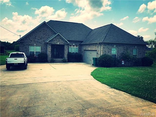 10816 Logan Club Drive, VANCE, AL 35490 (MLS #127690) :: The Advantage Realty Group