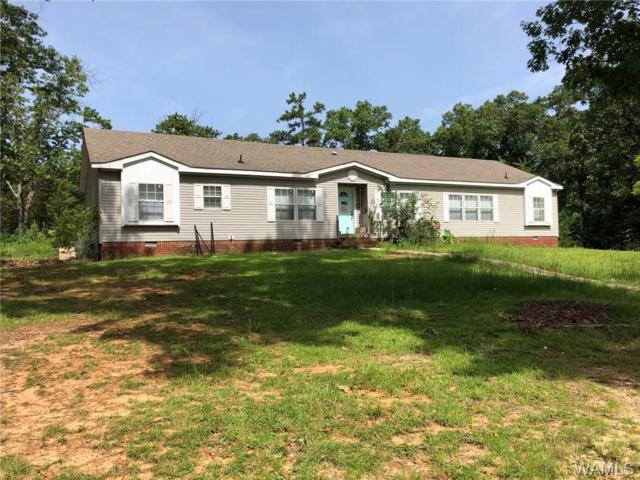 12184 Barger Road, TUSCALOOSA, AL 35406 (MLS #127726) :: The Advantage Realty Group