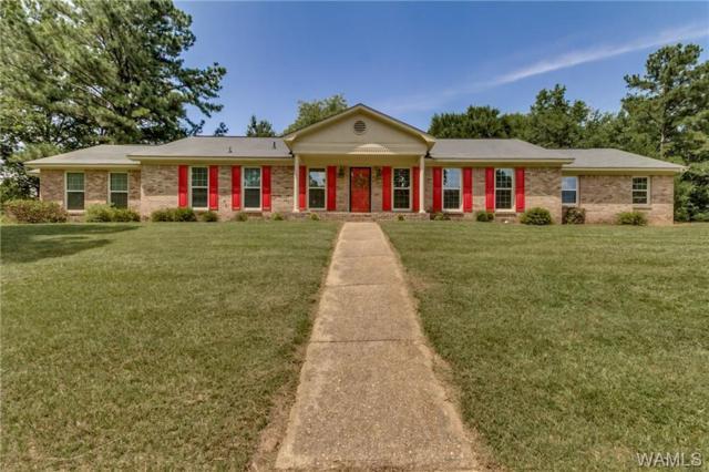 908 Lakeside Place, NORTHPORT, AL 35473 (MLS #127758) :: The Gray Group at Keller Williams Realty Tuscaloosa
