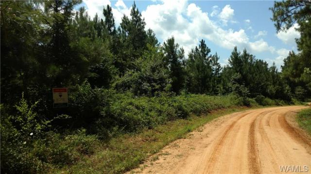 0 Co Rd 50, MOUNDVILLE, AL 35474 (MLS #127830) :: Williamson Realty Group