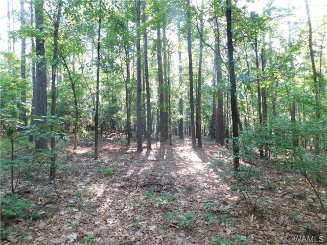 0 Hen Smith Road, VANCE, AL 35490 (MLS #127851) :: Alabama Realty Experts