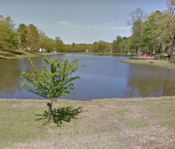 0 Tanglewood Circle #40, REFORM, AL 35481 (MLS #128038) :: The Gray Group at Keller Williams Realty Tuscaloosa
